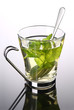 Cup of herbal tea with mint