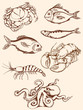 hand drawn seafood icons