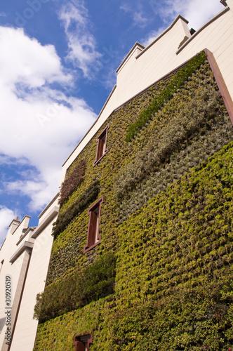 Leinwandbild Motiv Mur végétal