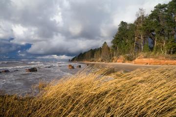Baltic Sea coast before the rain