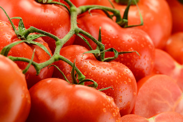 Composition with fresh tomatoes