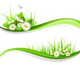 Fototapety Floral design