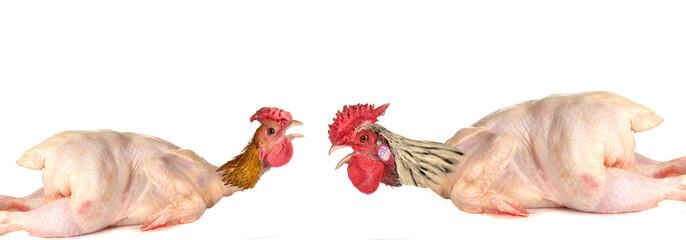 raw full length chicken lying