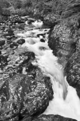 Fast flowing stream