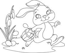 Easter Bunny ukrywanie jaj. Strona Coloring