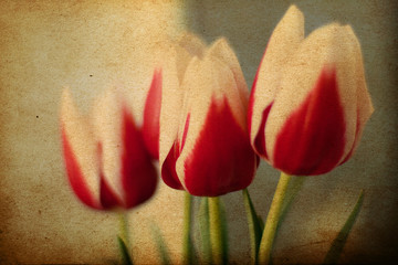 spring flowers, vintage grunge pattern