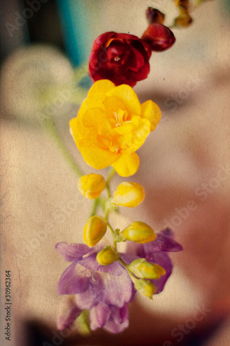 spring flowers, vintage grunge pattern - 30962364