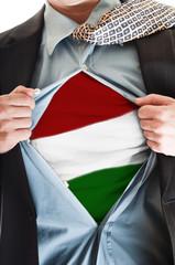 Hungary flag on shirt