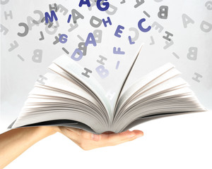 Libro aperto nella mano