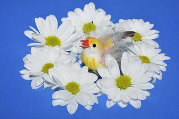 Цыпленок и цветы