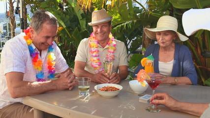 Senior friends taking an aperitif