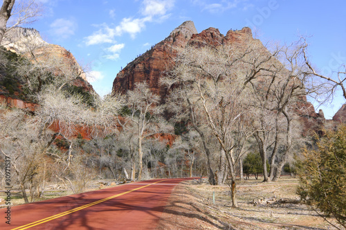 Zion National Park road (Utah, USA)