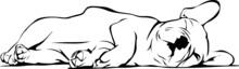 Buldog francuski dziecko śpi
