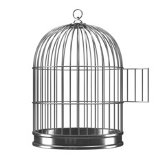 3d Silver bird cage with open door