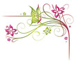 Ranke, Frühling, flora, Blumen, Blüten, filigran, grün, pink