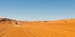 Sahara Desert Safari