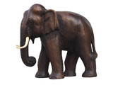 handcraft wooden elephant sculpture isolated on white poster
