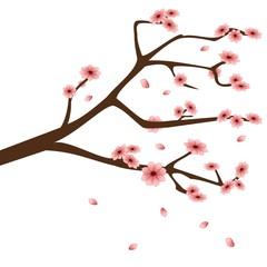 Zweig mit rosa Blüten