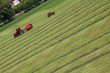 Mowing grass in Switzerland