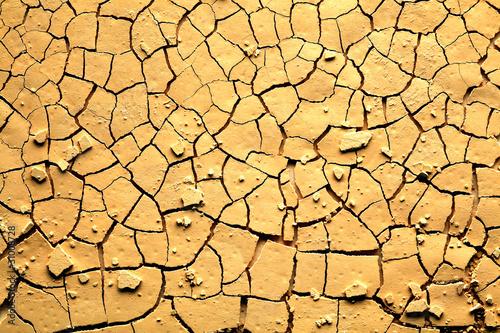 Leinwandbild Motiv Dried cracked earth