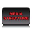 MEDIA STRUCTURE ICON