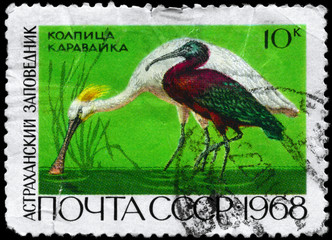 USSR - CIRCA 1968 Spoonbill and Ibis