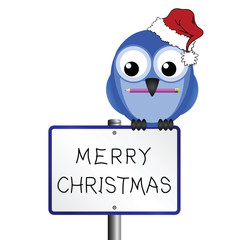Bird with hand written Merry Christmas message