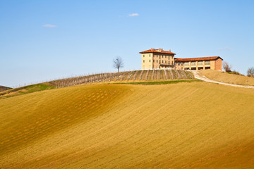Italian villa with vineyard: spring season