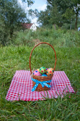 colorful painted easter eggs in a wicker basket on a checked tab