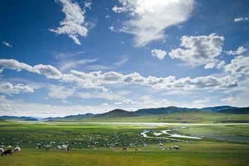 Vallée Mongolie