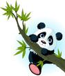 Fototapeten,tier,asien,asiatisch,bambus