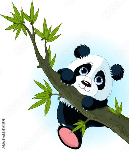 Fototapete Ashtray - Bambus - Säugetiere