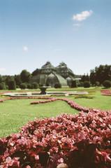 Parkanlage Schönbrunn mit Palmenhaus 1 / Schönbrunn park