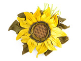 Sunflower. Flower from a genuine leather poster