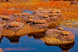 Couleurs du Dallol - 11