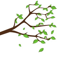 Twig with green leafs, seasonal backgrounds