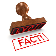 "3d Rubber Stamp - ""Fact!"""