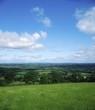 Pastoral Farmscape, Borris, Co Carlow, Ireland