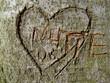 Enttäuschte Liebe