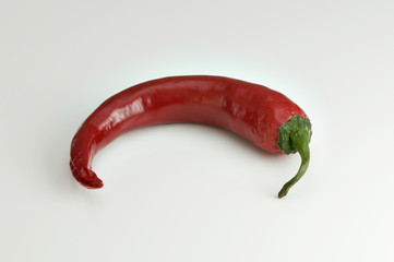 Red hot chili pepper for spicy food