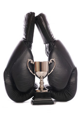 boxing gloves and trophy