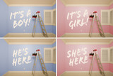 Maternity Series of Pink And Blue Empty Rooms poster