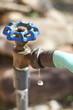 Leaky Water Faucet in Detail