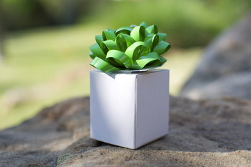 Little White Gift Box