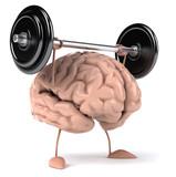 Cerveau fort - 31097797
