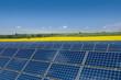 Solarmodule vor einem Rapsfeld