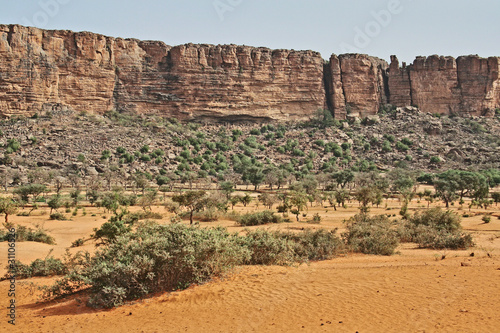 Dogon Country