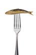 diät / gabel mit einer geräucherten sardine