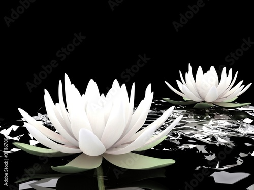 3d lotus on water - 31116780