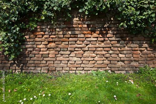 Steinmauer im garten stockfotos und lizenzfreie bilder auf bild 31120946 - Steinmauer im garten ...